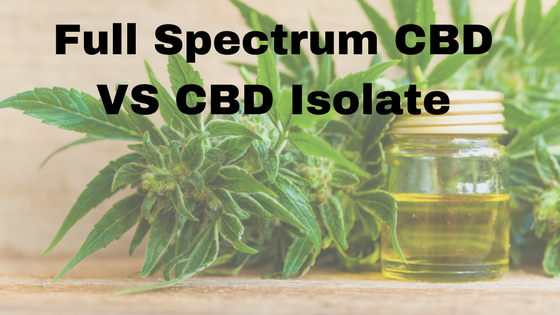 Differences Between Full Spectrum CBD and CBD Isolate