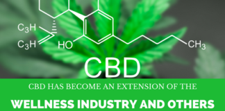 CBD and the Wellness Industry