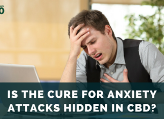 Treating Anxiety Attacks with CBD