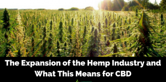 The Expansion of the Hemp Industry and What This Means for CBD