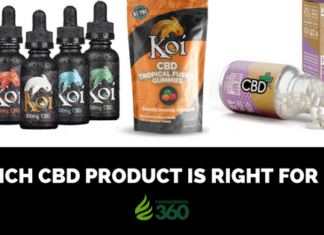 How to Choose the Best CBD Product for You
