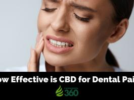 CBD in Dentistry