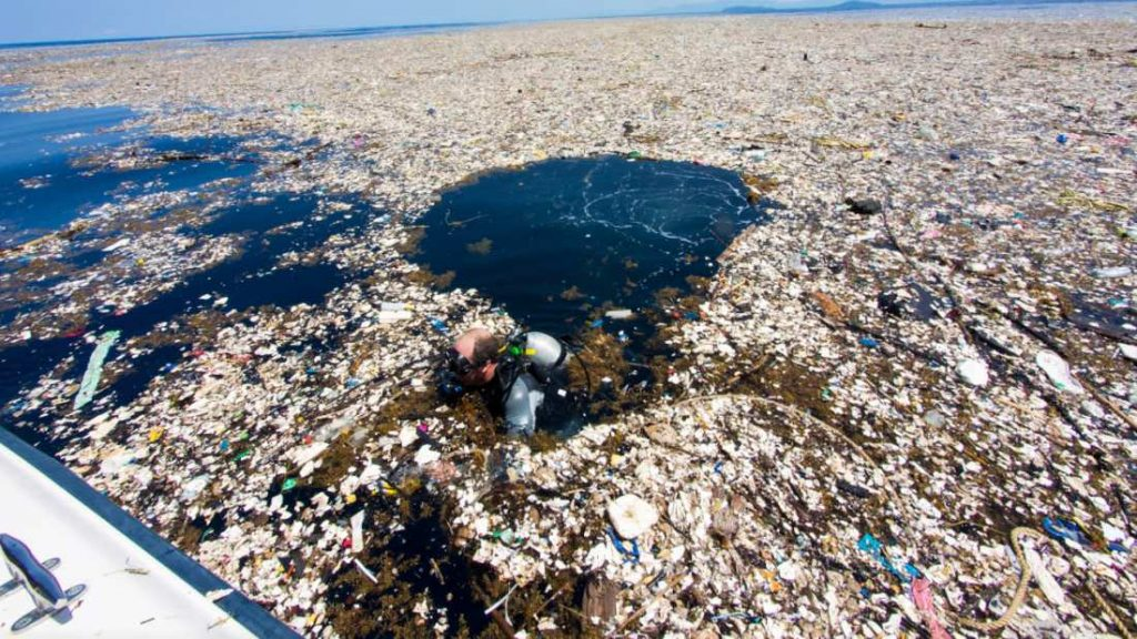 Plastic Pollution That Can Be Prevented with Hemp Plastic