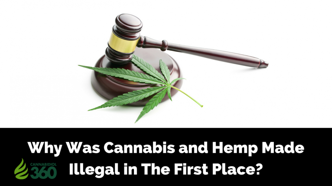 Legacy of CBD: Legalization History of Cannabis & Hemp