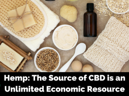 The Economic Use of Hemp Products