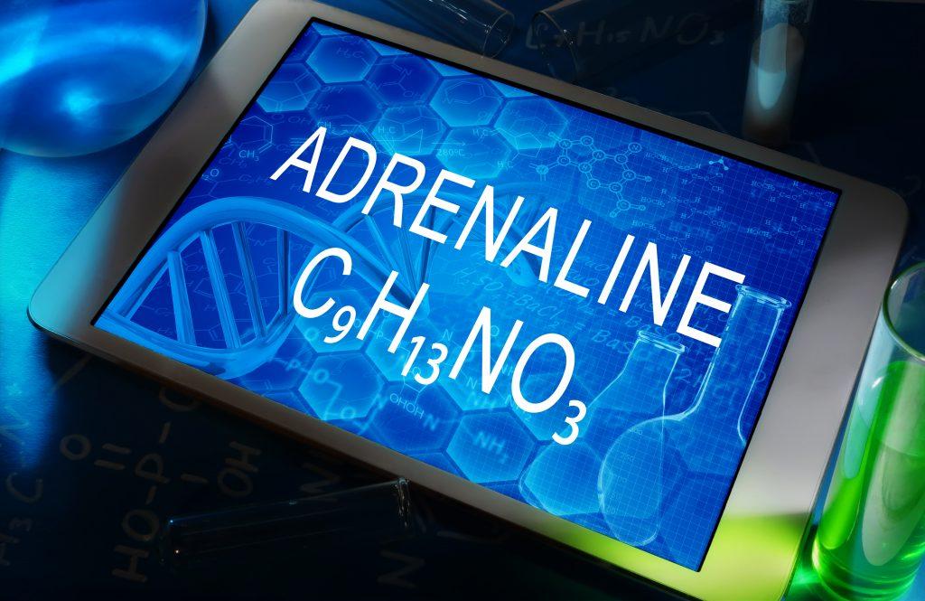 CBD for Adrenal Gland