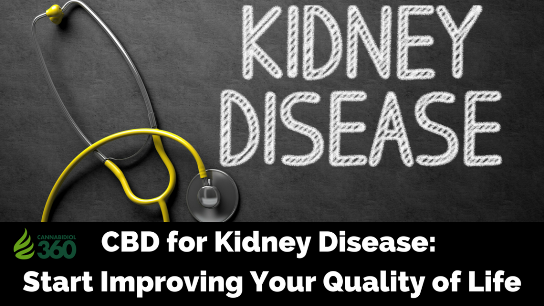 Treating Kidney Disease with CBD