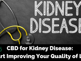 Treating Kidney Disease with CBD