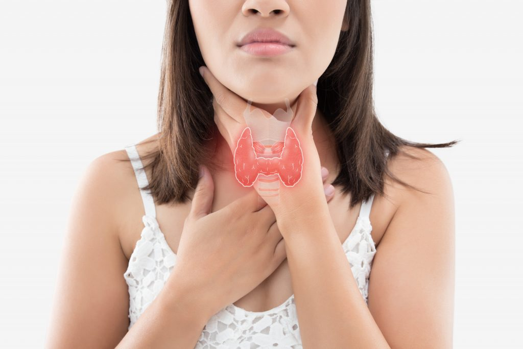 CBD for Thyroid Gland