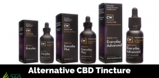 Alternative CBD Tincture Brands to CW Hemp