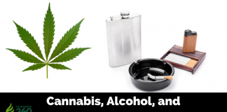 Cannabis vs Tobacco and Alcohol