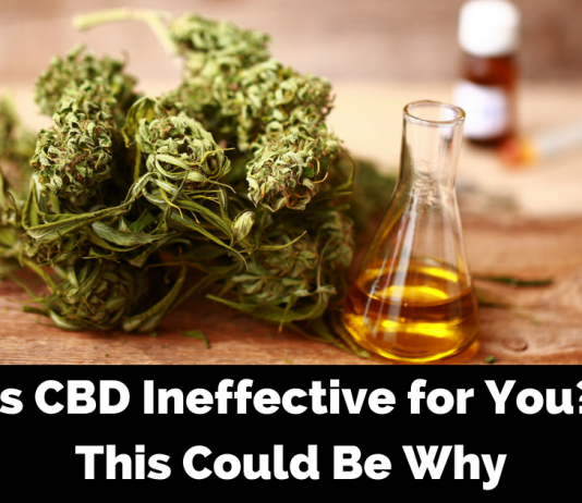 Why CBD Oil Doesn't Work for You and What You Can do to Experience the benefits of CBD