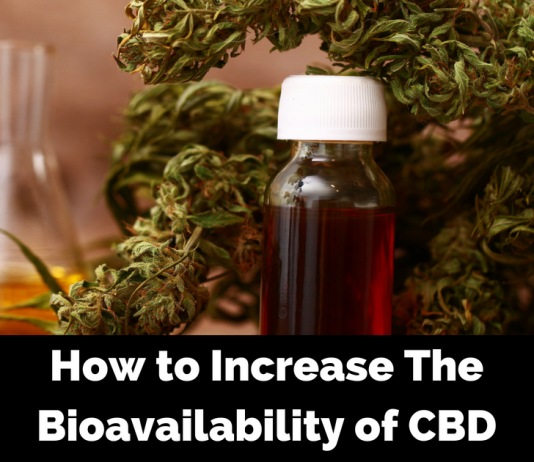 Improve the Function of Your Endocannabinoid System to Improve the Bioavailability of CBD