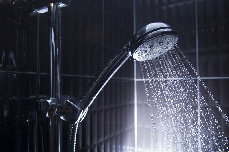 Enhance Your Endocannabinoid System with a Cold Shower to Improve CBD Bioavailability
