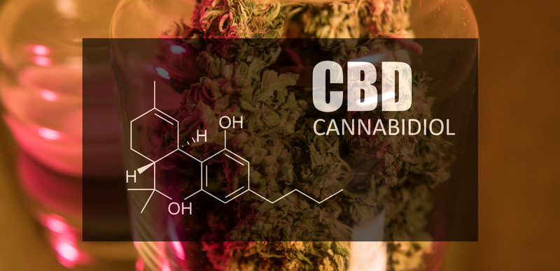 CBD and it's affects on opioid addiction