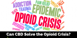 The Effectiveness of CBD on Opioid Addiction