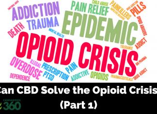 The Effectiveness of CBD on Opioid Addiction