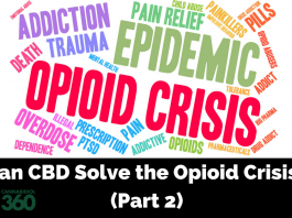 Is CBD The Solution to the Opioid Epidemic?