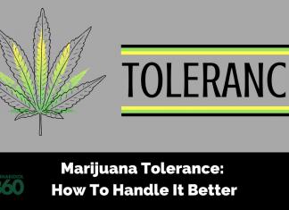 Marijuana Tolerance: How To Handle It Better