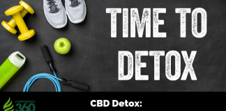 CBD Detox: How to Stop Toxins at the Source