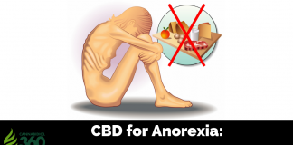 CBD for Anorexia: Eat What You Want Guilt Free