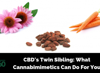 CBD's Twin Sibling: What Cannabimimetics Can Do For You