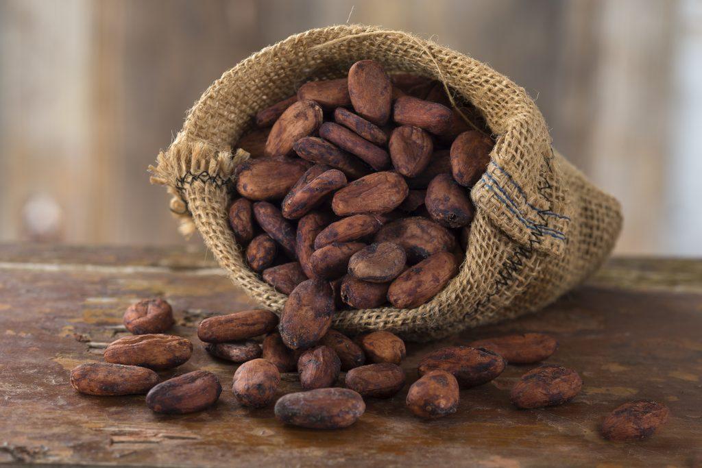 Cacao similar to CBD