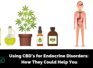 Using CBD's for Endocrine Disorders