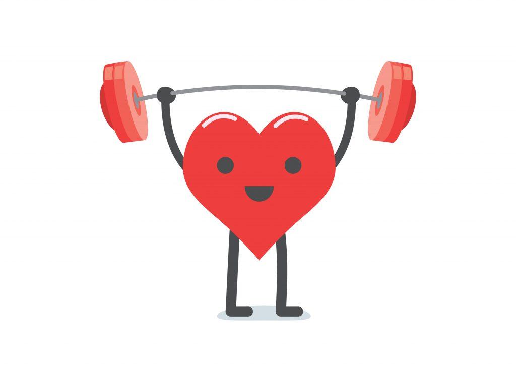 CBD Promotes a Healthy Heart