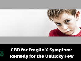 CBD for Fragile X Symptom: Remedy for the Unlucky Few