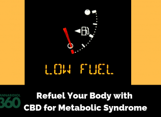 Refuel Your Body with CBD for Metabolic Syndrome