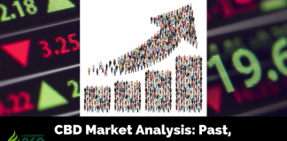 CBD Market Analysis: Past, Present and Possible Future