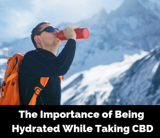The Importance of Being Hydrated While Taking CBD