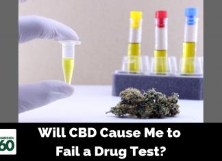 Will CBD Cause Me to Fail a Drug Test?