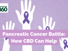 Pancreatic Cancer Battle: How CBD Can Help