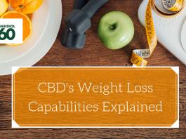 CBD's Weight Loss Capabilities Explained