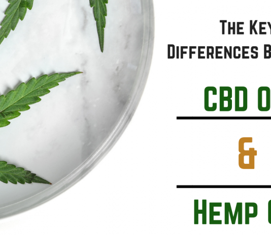 The Key Differences Between CBD Oil & Hemp Oil