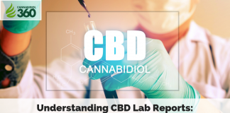 Understanding CBD Lab Reports: Top Things to Look For